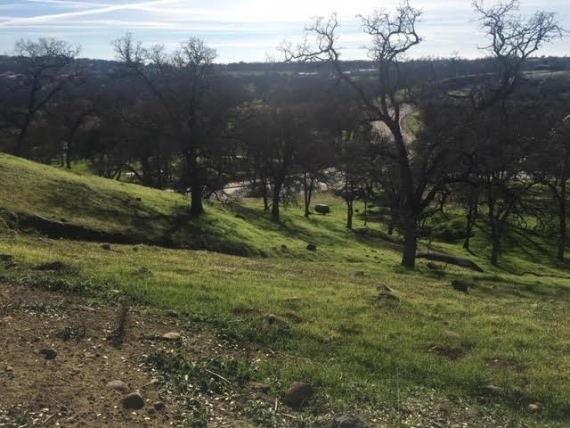 1502 Camino Verdera, Lincoln, CA - USA (photo 3)