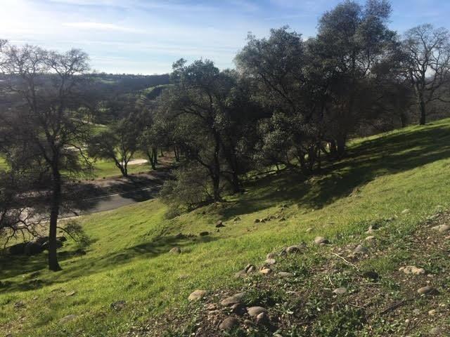 1502 Camino Verdera, Lincoln, CA - USA (photo 4)