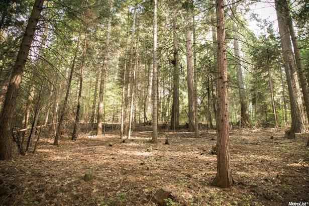 4220 Pegasus Trail, Pollock Pines, CA - USA (photo 1)