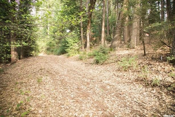 4220 Pegasus Trail, Pollock Pines, CA - USA (photo 3)