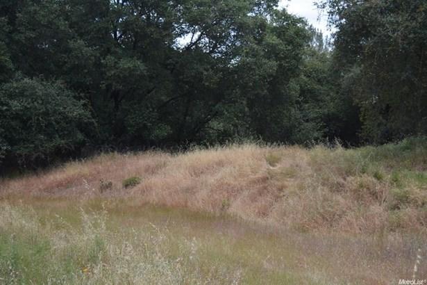 0 Owls Nest Road, Shingle Springs, CA - USA (photo 1)