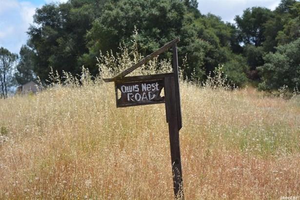 0 Owls Nest Road, Shingle Springs, CA - USA (photo 4)