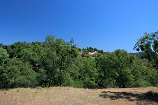 5001 South Shingle Road, Shingle Springs, CA - USA (photo 3)