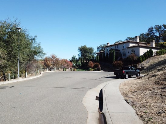 160 Temperence River Court, Folsom, CA - USA (photo 4)
