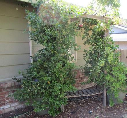7124 Brookcrest Way, Citrus Heights, CA - USA (photo 4)