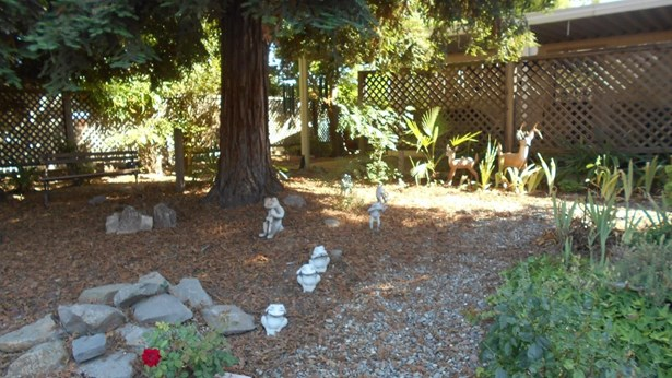 6938 Hidden Brook Lane, Citrus Heights, CA - USA (photo 4)