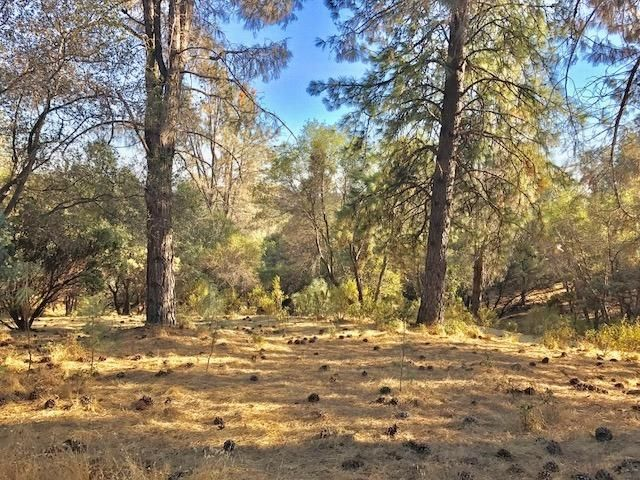 2716 Westville Trail, Cool, CA - USA (photo 2)