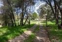 51651 Badger Ridge Lane, Oakhurst, CA - USA (photo 1)
