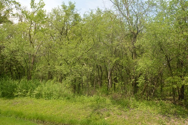 Land - LAKE FOREST, IL (photo 1)