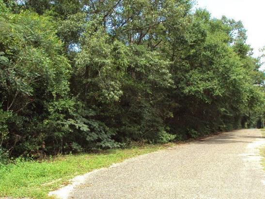 Vacant Land - Laurel Hill, FL (photo 1)