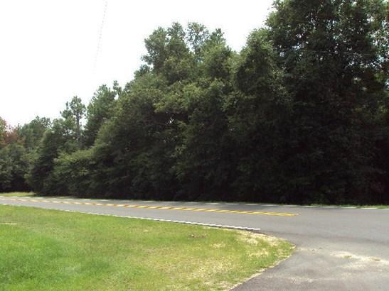 Vacant Land - Laurel Hill, FL (photo 2)