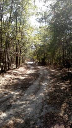 Vacant Land - Bonifay, FL (photo 4)