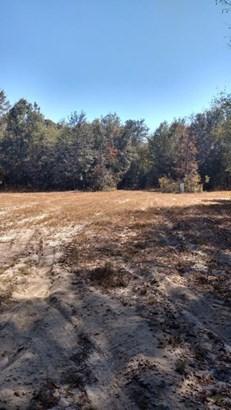 Vacant Land - Bonifay, FL (photo 5)