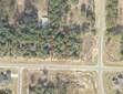 Vacant Land - Crestview, FL (photo 1)