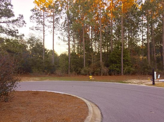 Vacant Land - Freeport, FL (photo 2)