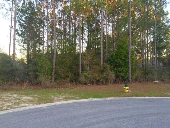 Vacant Land - Freeport, FL (photo 4)