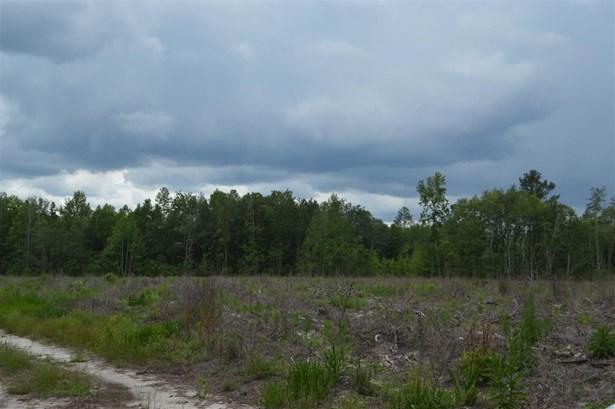 James Noble Road Unit #n/a, Monticello, FL - USA (photo 1)