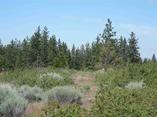 7-2  Lot 156 Cottontail Dr. , Weed, CA - USA (photo 3)