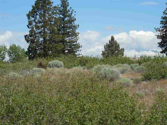 7-2  Lot 156 Cottontail Dr. , Weed, CA - USA (photo 5)