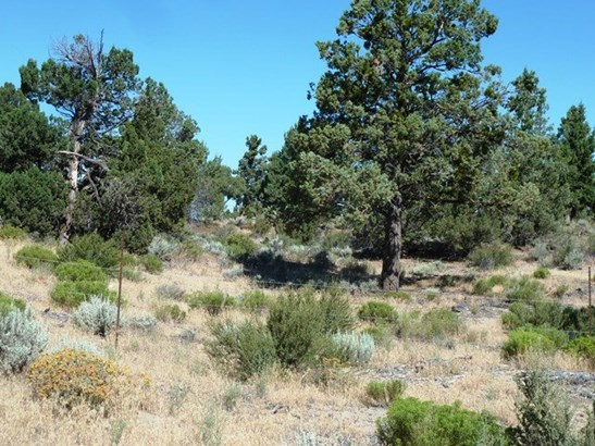 Blk 52  Lot 13 Layfield Road , Montague, CA - USA (photo 5)