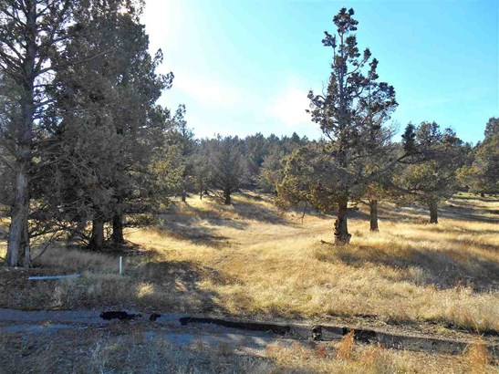 Lot 17 Wildhorse Place , Weed, CA - USA (photo 1)