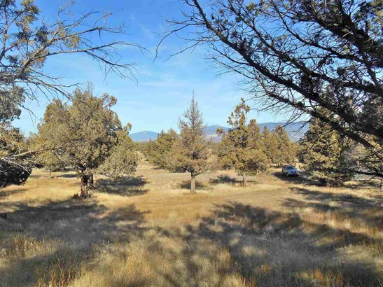 Lot 17 Wildhorse Place , Weed, CA - USA (photo 5)