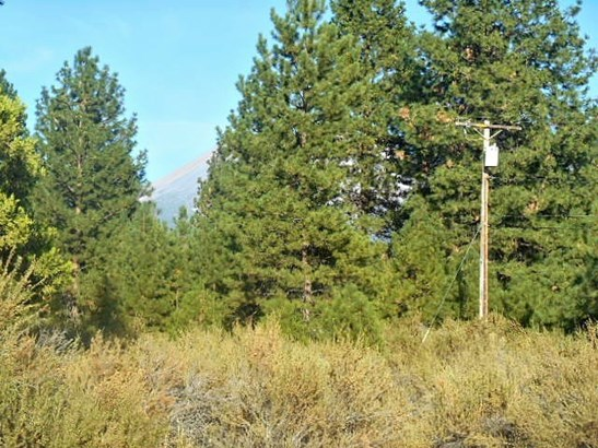 3.1 Acres Black Butte Drive , Weed, CA - USA (photo 5)