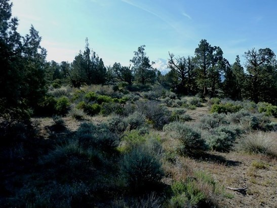 Lot 24 Pine Top Road , Montague, CA - USA (photo 1)