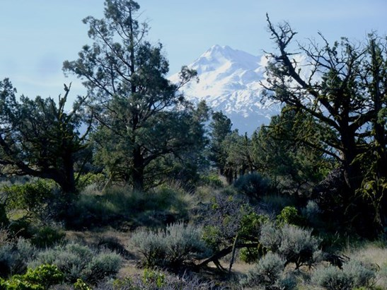 Lot 24 Pine Top Road , Montague, CA - USA (photo 2)