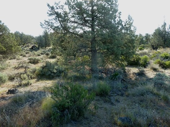 Lot 24 Pine Top Road , Montague, CA - USA (photo 5)