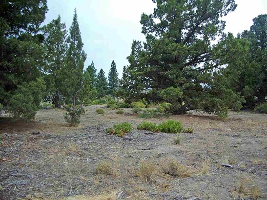 Lot 210 Archer Road , Weed, CA - USA (photo 1)