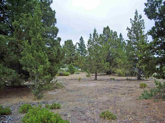 Lot 210 Archer Road , Weed, CA - USA (photo 2)