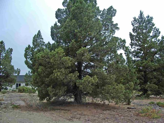 Lot 210 Archer Road , Weed, CA - USA (photo 3)