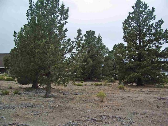 Lot 210 Archer Road , Weed, CA - USA (photo 5)