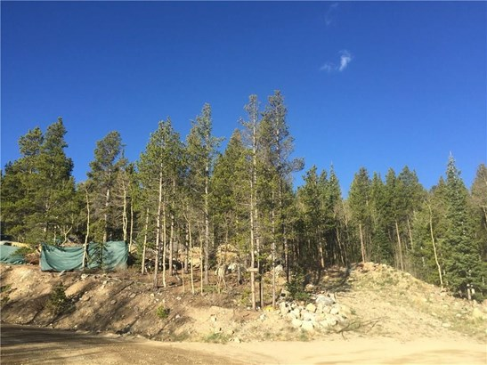 Sf/Mf/Acreage - Alma, CO (photo 2)