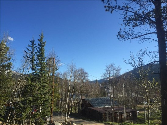 Sf/Mf/Acreage - Alma, CO (photo 5)