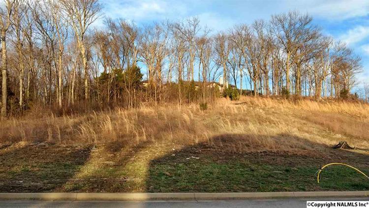 2806 Talon Circle, Huntsville, AL - USA (photo 1)