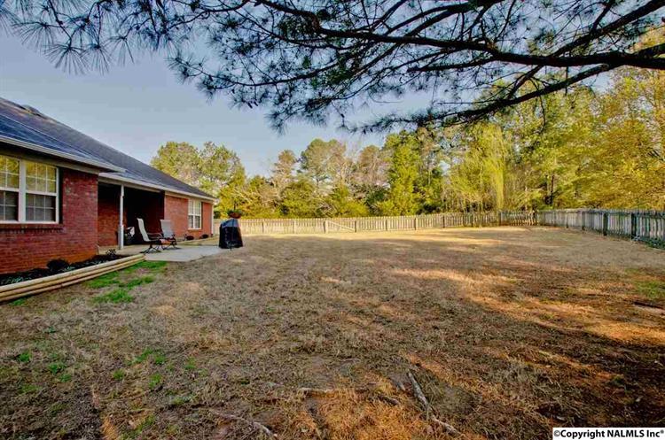 213 Salvia Court, Harvest, AL - USA (photo 3)