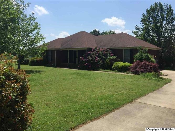 100 Whitt Haven Drive, Toney, AL - USA (photo 1)