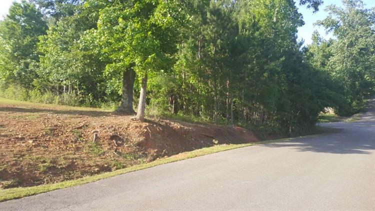 0 Smithey Lane, Huntsville, AL - USA (photo 3)