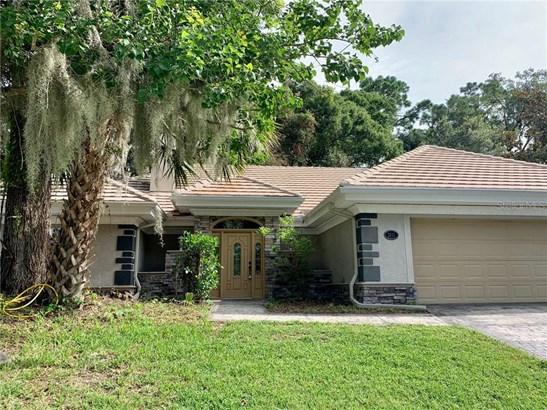 Single Family Residence - MOUNT DORA, FL
