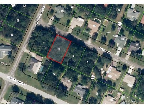 Residential Development - CITRUS SPRINGS, FL (photo 1)