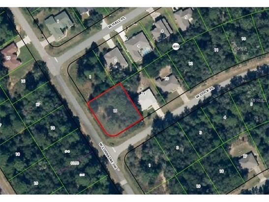 Residential Development - CITRUS SPRINGS, FL (photo 4)