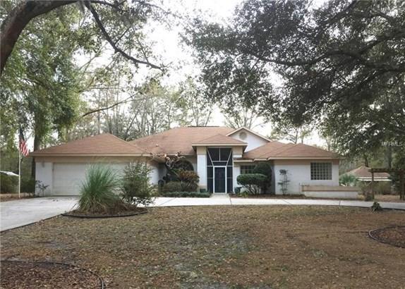 Single Family Home, Contemporary - DUNNELLON, FL (photo 1)