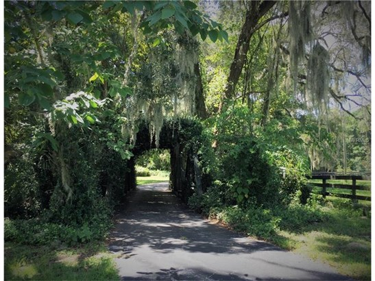 Farm - OCALA, FL (photo 2)