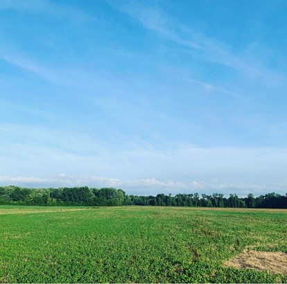 Acreage - Blanchester, OH