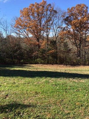 Acreage - Morning View, KY (photo 5)