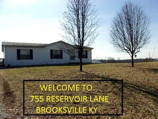 Ranch, Single Family,Single Family Detached - Brooksville, KY (photo 3)