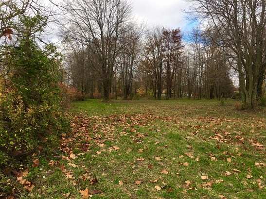 Single Family Lot - Hamersville, OH (photo 1)