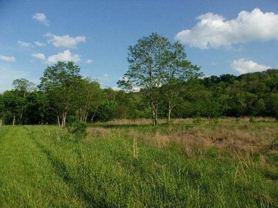 Acreage - Foster, KY (photo 3)